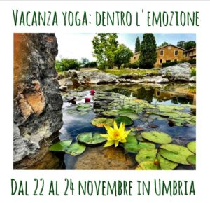 vacanza yoga: dentro l'emozione